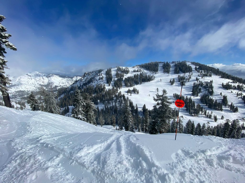 Alpine Meadows Skiing